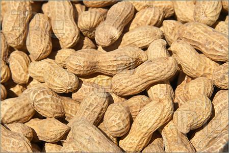 Peanuts-233835