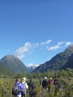 Walking the Milford Sound track