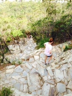 The walk down the Mt Coolum was much easier than the walk up...