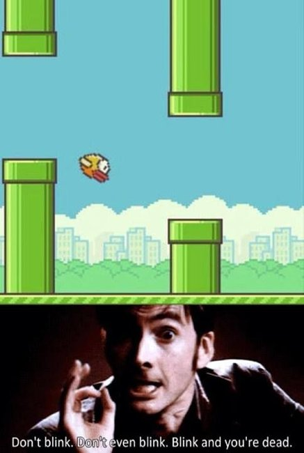 flappy b In Memoriam: The life and death of Flappy Bird.