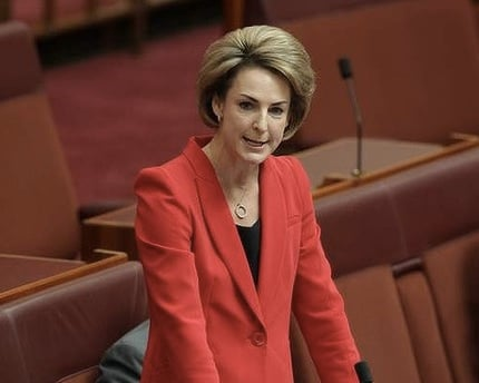 Michaelia Cash not a feminist