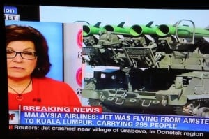 295 people were on board Mh17
