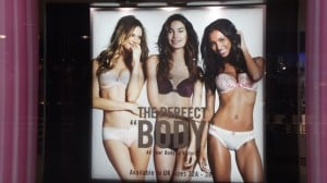 theperfectbody