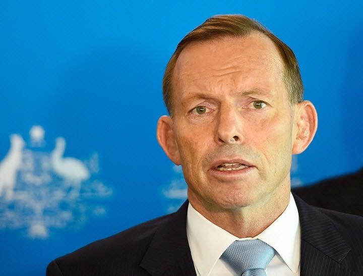 Tony Abbott domestic violence