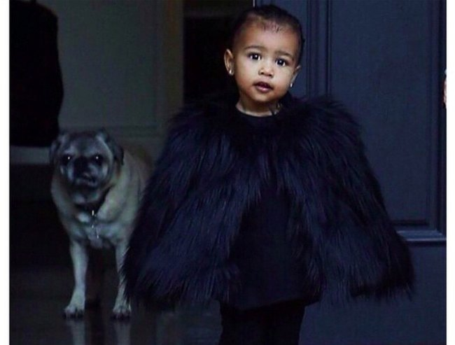 north west trend setter thumb