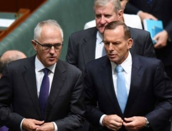 As support for Malcolm Turnbull grows, leadership spill rumours are rife.