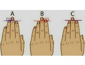 What do the lengths of your fingers say about your personality? A lot, apparently.