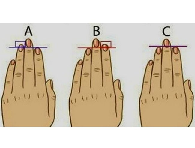 hand Feature