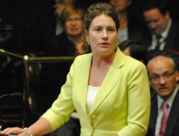 NSW Labor MP Trish Doyle tells own story of domestic violence in maiden speech.