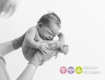 Photographer captures newborns seconds after they