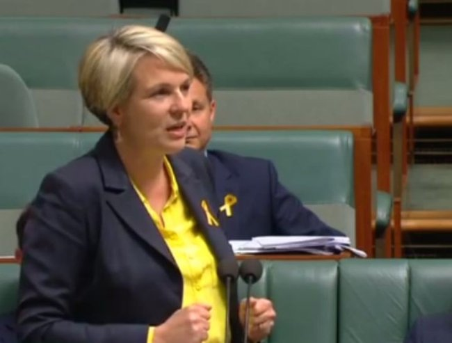Tanya Plibersek on Malcolm Turnbull