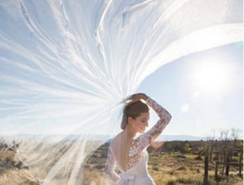 Newlywed Allison Williams has shared a magical picture of her wedding dress.