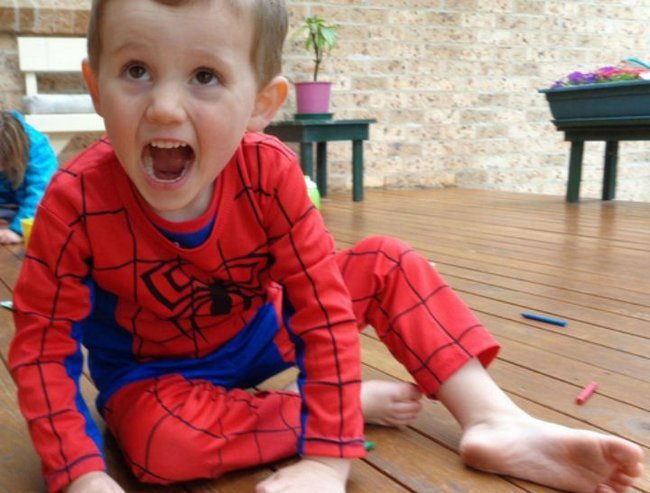 A car has been seized from a person of interest in the William Tyrrell investigation.
