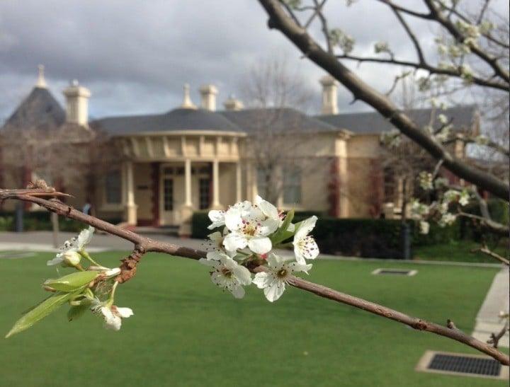 Camberwell Grammar School in Melbourne.