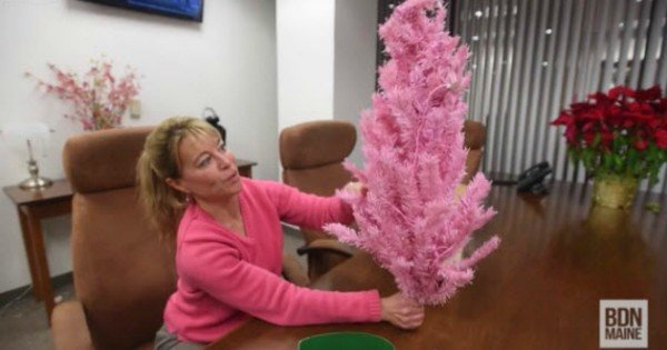 teacher remove christmas tree
