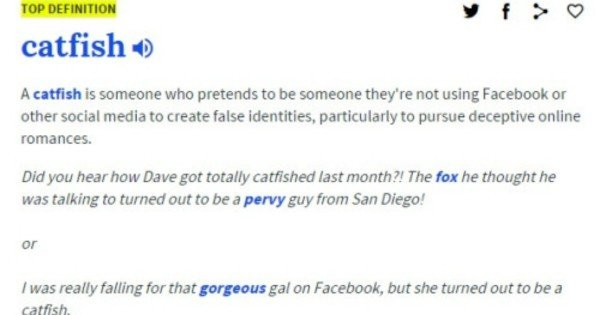 catfish dating definition