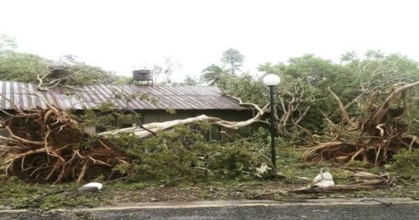 Fiji cyclone 11