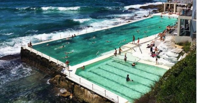 The infectious bugs in swimming pools - University of queensland swimming pool ...