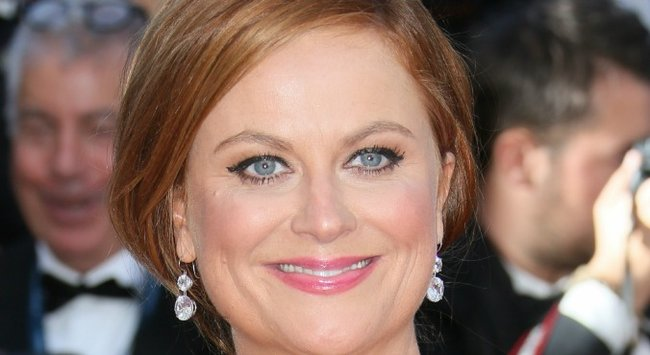 Amy Poehler's hair takes a dark turn. (It looks brilliant.)