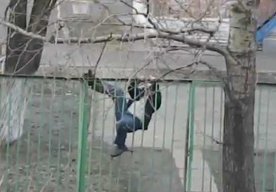 This Drunk Mantrying To Climb A Fence Will Make You