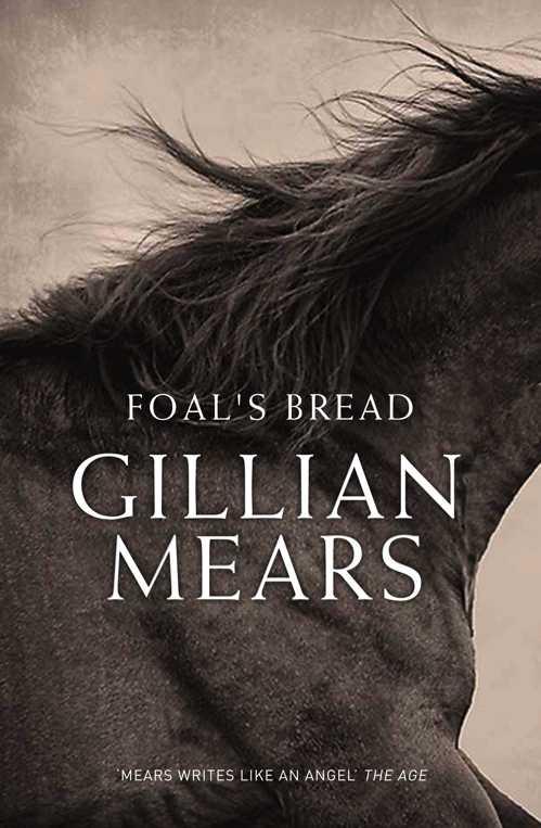 Foals Bread - Gillian Mears