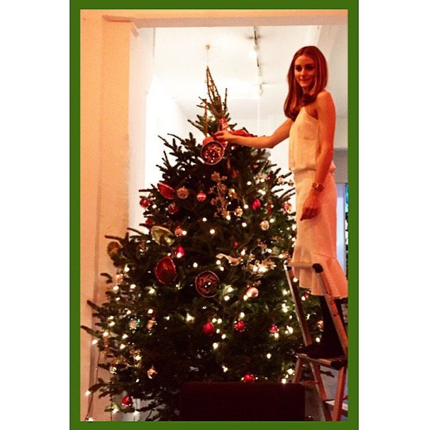 Olivia Palmero and her large tree.