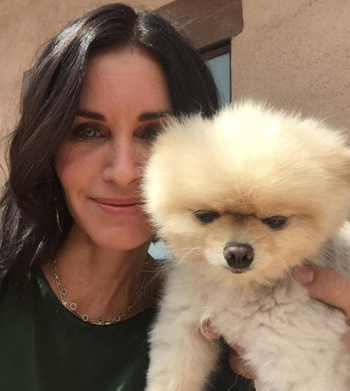 courtney cox post natal depression