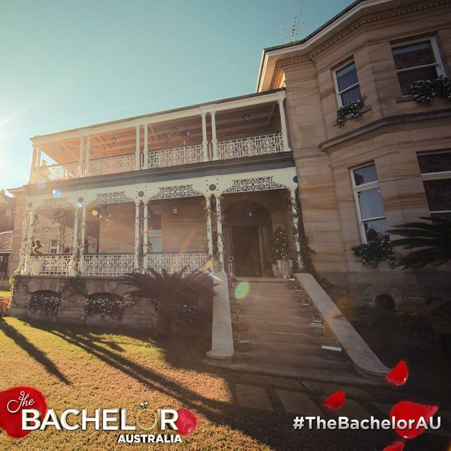 The bachelor apologises to the neighbours for the upcoming noise - Bachelor house ...