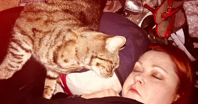 Cannabis saved cat's life: How a Californian writer saved