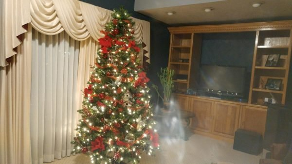 ghost next to their christmas tree