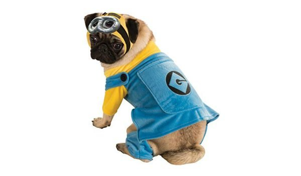 despicable-me-dog-costume