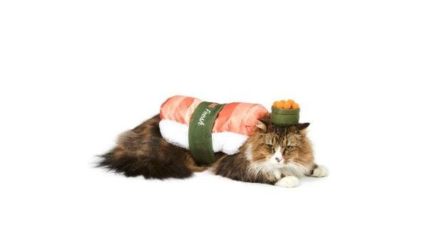 sushi-cat-costume