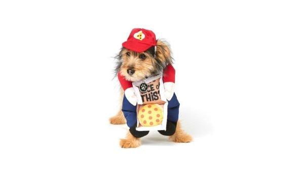 pizza-delivery-pet-costume