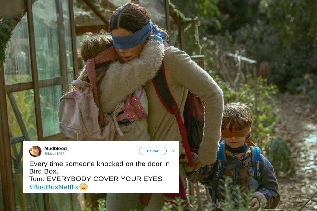 Bird Box Memes 19 Hilarious Twitter Reactions And Memes
