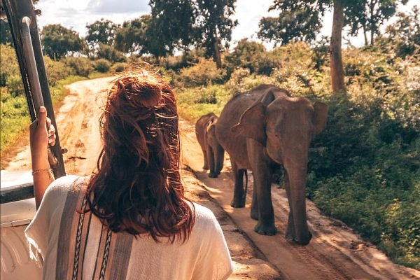 24 photos that prove why Sri Lanka will be the best travel destination of 2019.