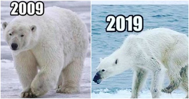 The Confronting 10 Year Challenge Meme You Need To See