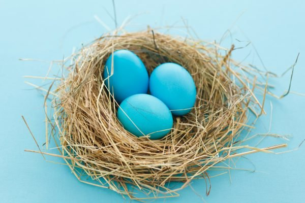 Emma thought 'birdnesting' was the solution to her divorce. Until she found someone else in the 'nest.'
