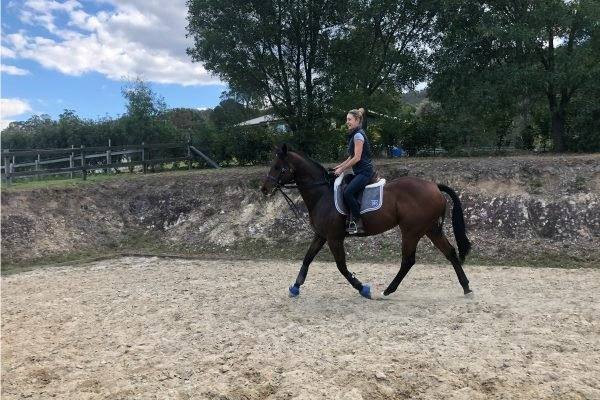 horse racing australia debate
