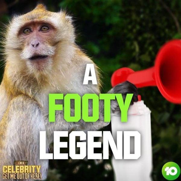 im a celebrity australia 2020