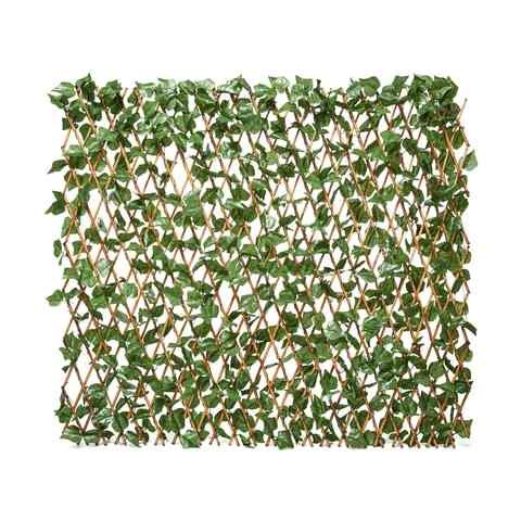 Ivy wall kmart