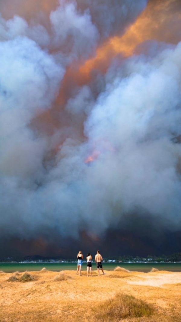 bushfire australia photos 2020